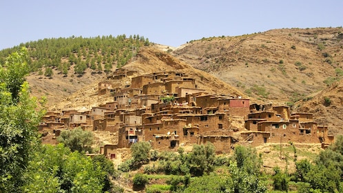 Hillside town surrounded by trees in Marrakech