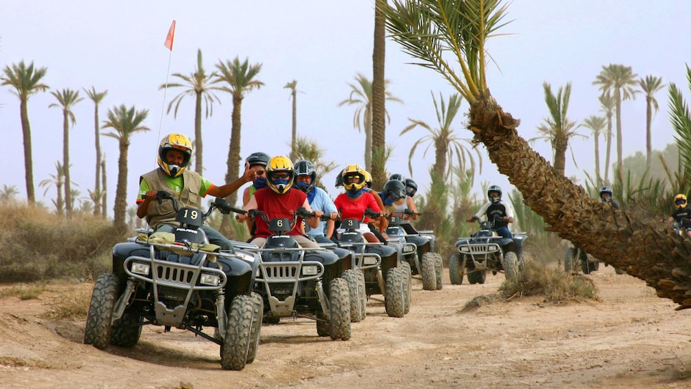 Apri foto 1 di 5. Quad-biking group on a dirt road lined with palm trees in Marrakech