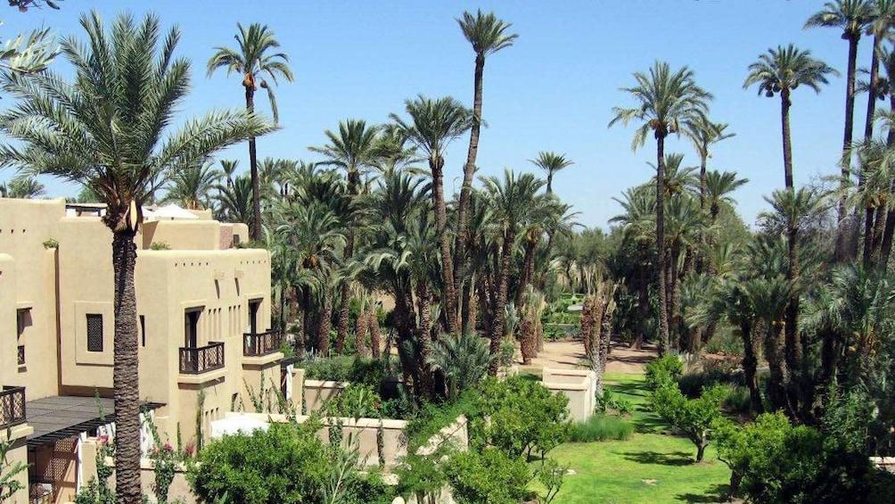 Foto 4 von 5 laden Building nestled in a palm grove in Marrakech