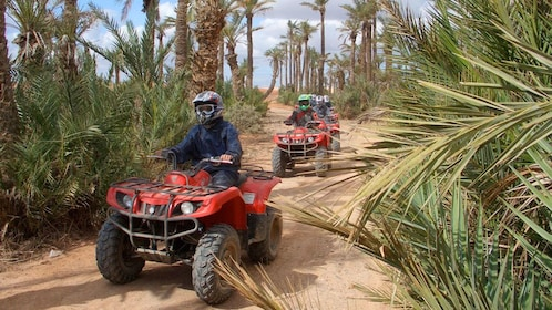 Quad-biking group on a path through a palm grove in Marrakech