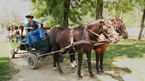 Carriage ride to the Godollo Palace in Hungary