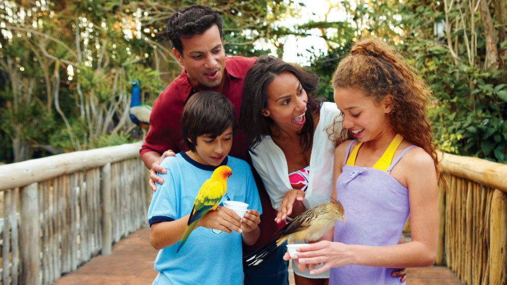 Family holding birds in Orlando.