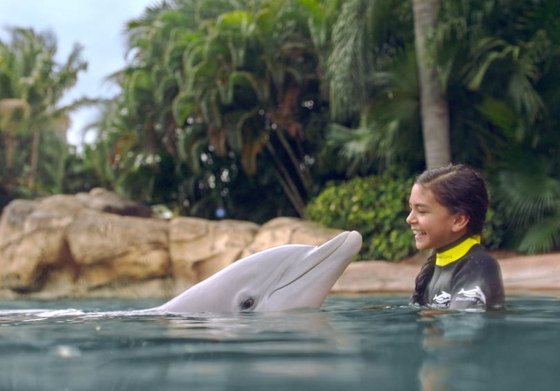 Discovery Cove® Resort Packages