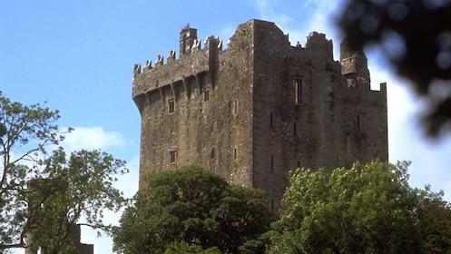 The old Blarney Castle in Ireland