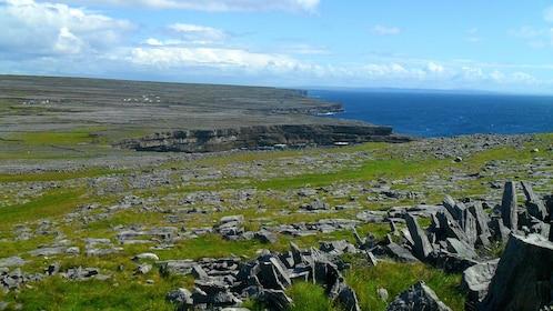 Rocky and grassy coast line in Ireland
