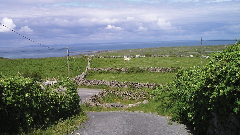 Show item 5 of 5. Small road leading to the sea in Ireland