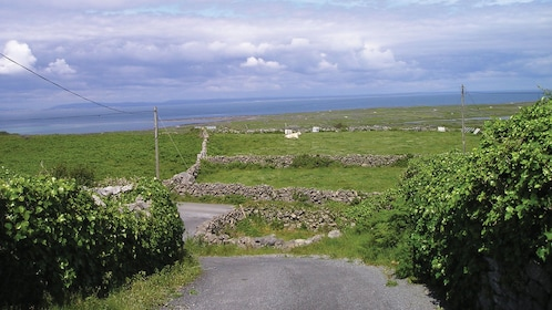 Small road leading to the sea in Ireland