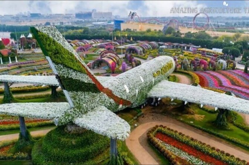 Show item 4 of 13. Dubai Miracle Garden Ticket with Transfer