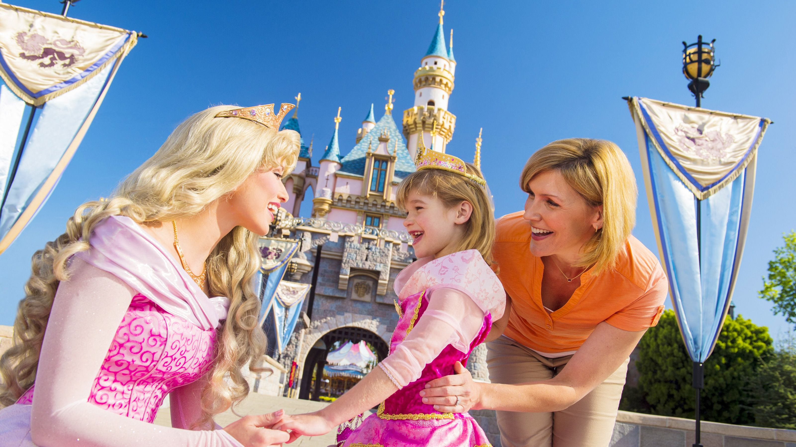 Cinderella meets a little girl in Disneyland