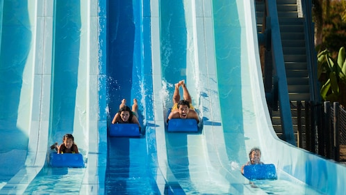 Four people on waterslides