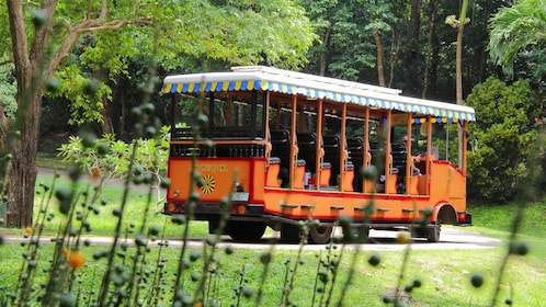 Trolley traveling down street on Corregidor Island