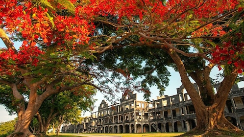 Peeking through brightly colored trees at the ruins on Corregidor Island