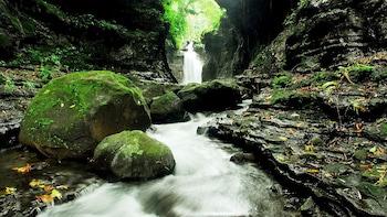 Ausflug zu den Quellen von Hidden Valley mit Mittagessen