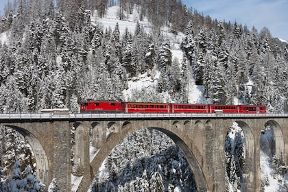 Bernina Express Rail Tour to St. Moritz