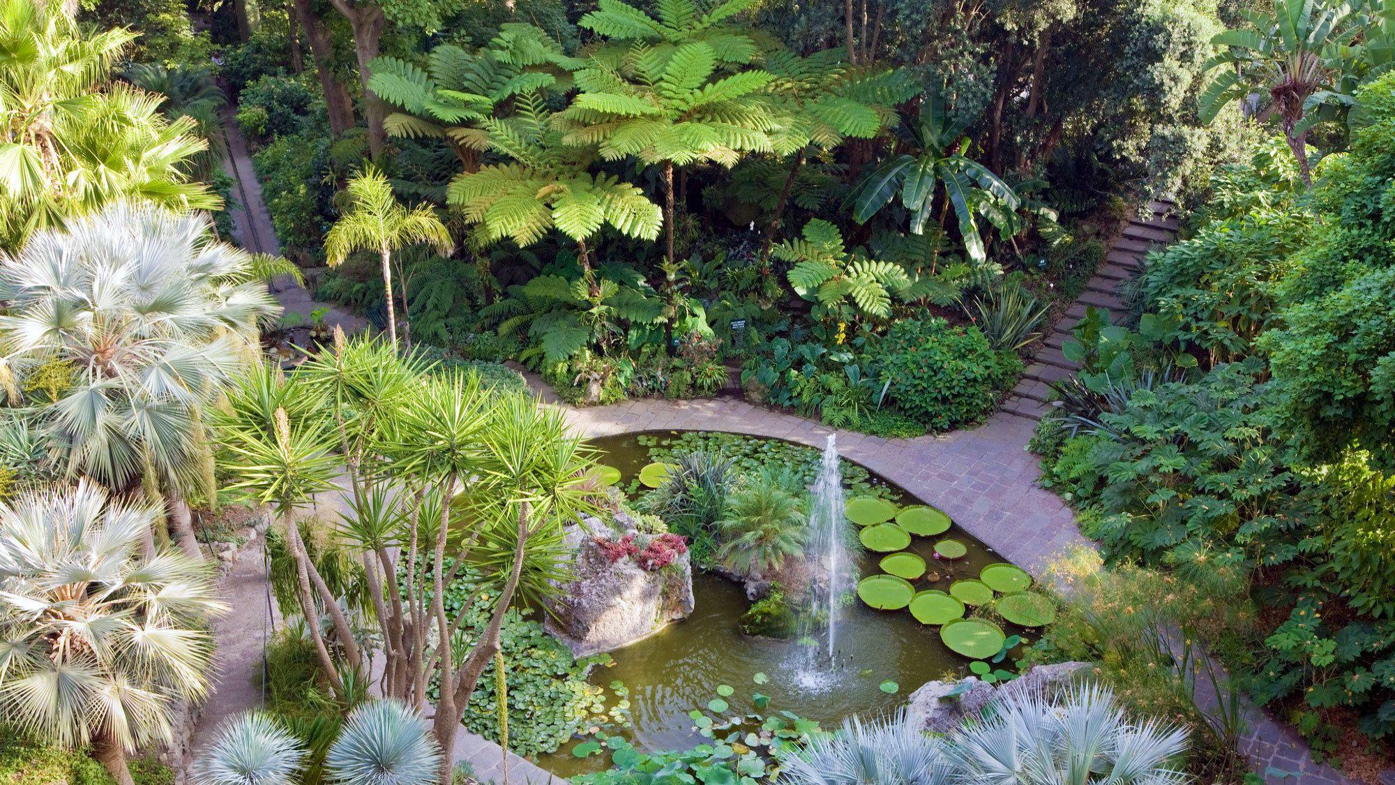 Mortella Gardens pond and fountain on Ischia