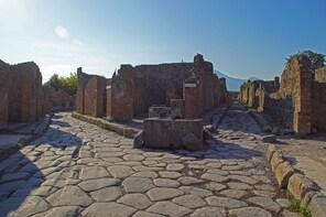 Tour di mezza giornata di Pompei da Napoli