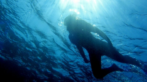 Underwater silhouette of a snorkeling woman on the surface of the water in Gaiola