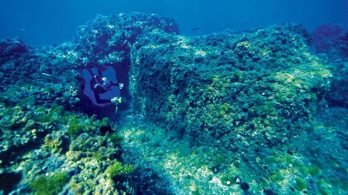 Snorkeler wimming through a small tunnel in the coral reef off the coast of Gaiola