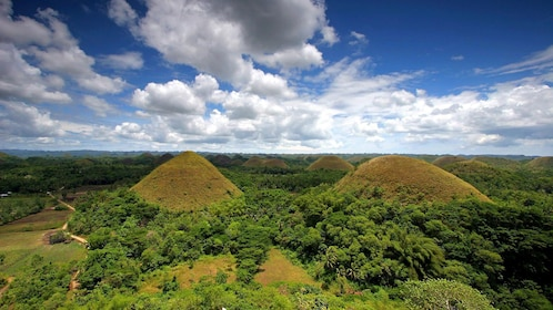 Mounds in the green landscape of Bohol
