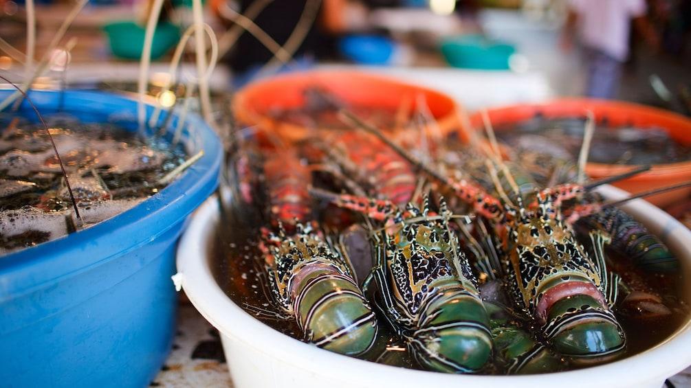 Foto 2 von 5 laden Shrimp on display at the Cebu market tour