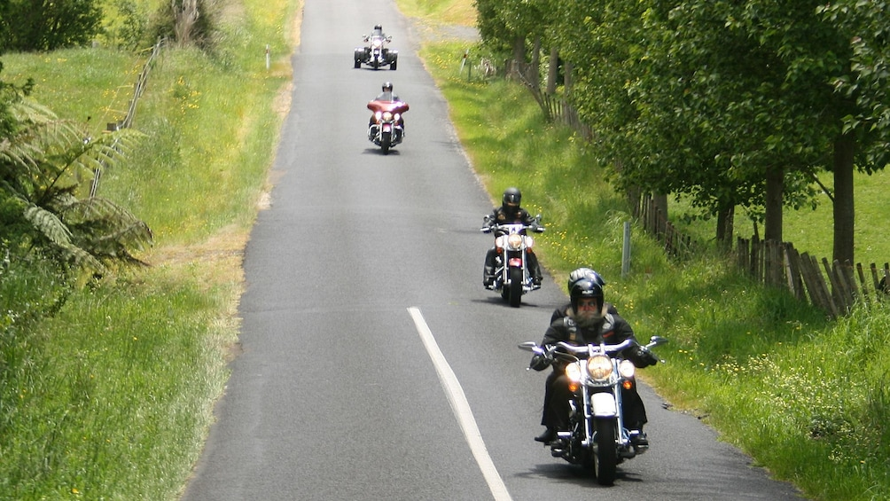 Show item 2 of 5. Motorcycles on tree-lined road in New Zealand