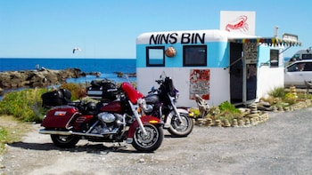 Harley Davidson Chauffeured Kaikoura & Helicopter Whale-Watching Tour