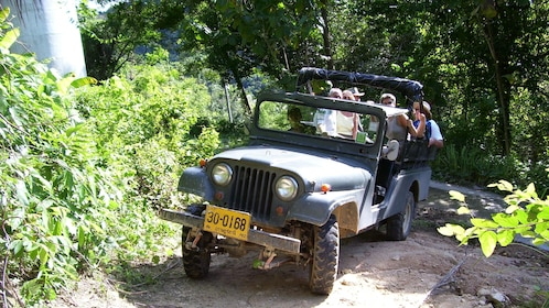 Jungle vehicle in Koh Samui