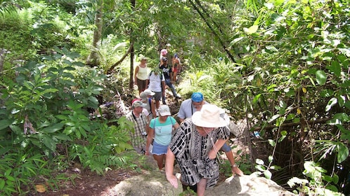 Hiking group in Koh Samui
