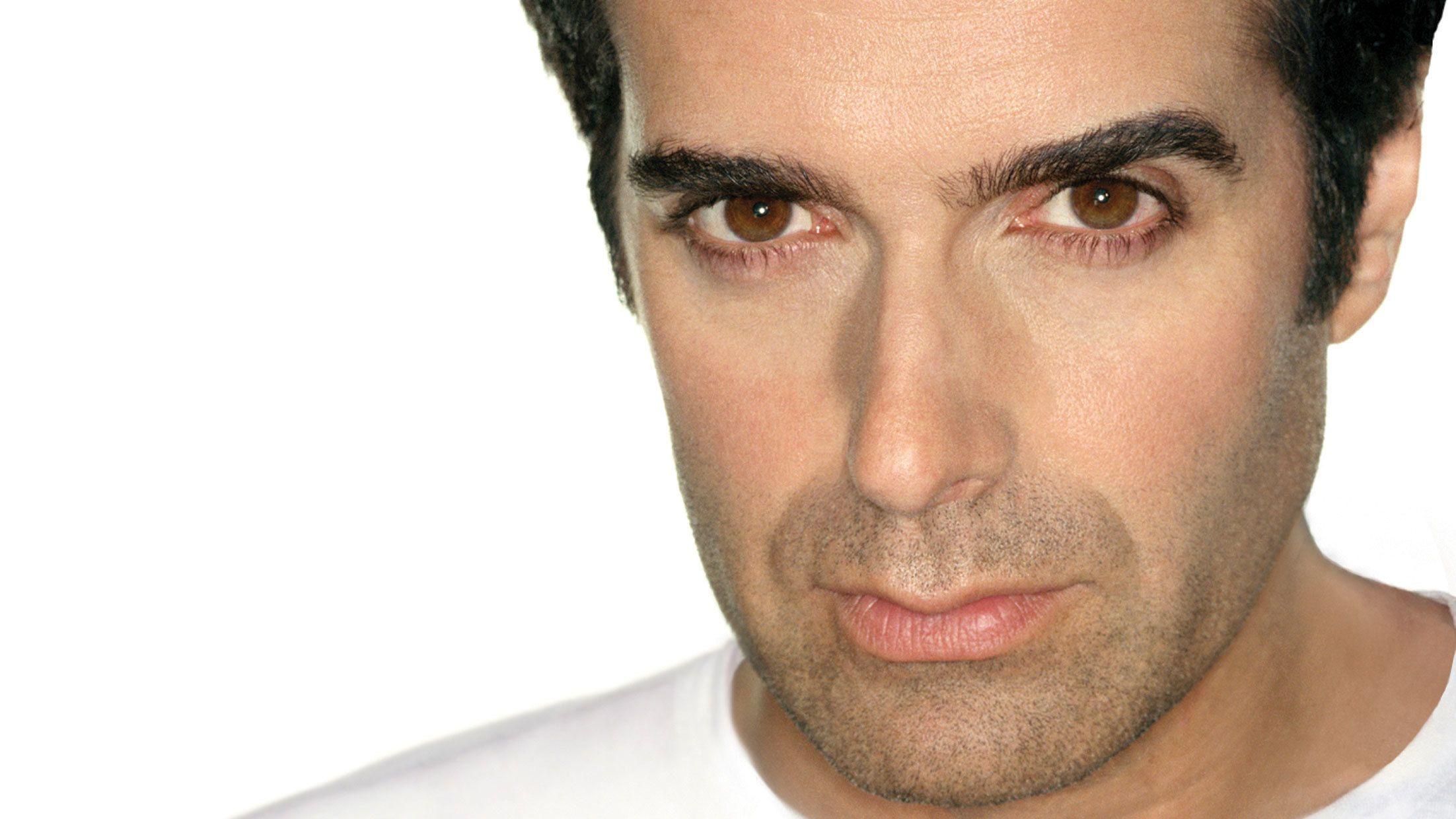 Portrait of David Copperfield