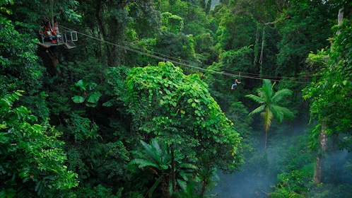 View of the zipline tour above Daintree Rainforest canopy in Australia