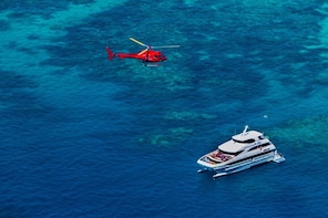 Cruise & Fly Reef Tour