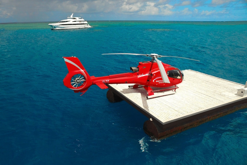 Half-Day Fly & Cruise Reef Tour