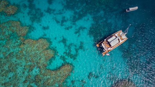 Aerial view of a Catamaran next to a reef in Cairns