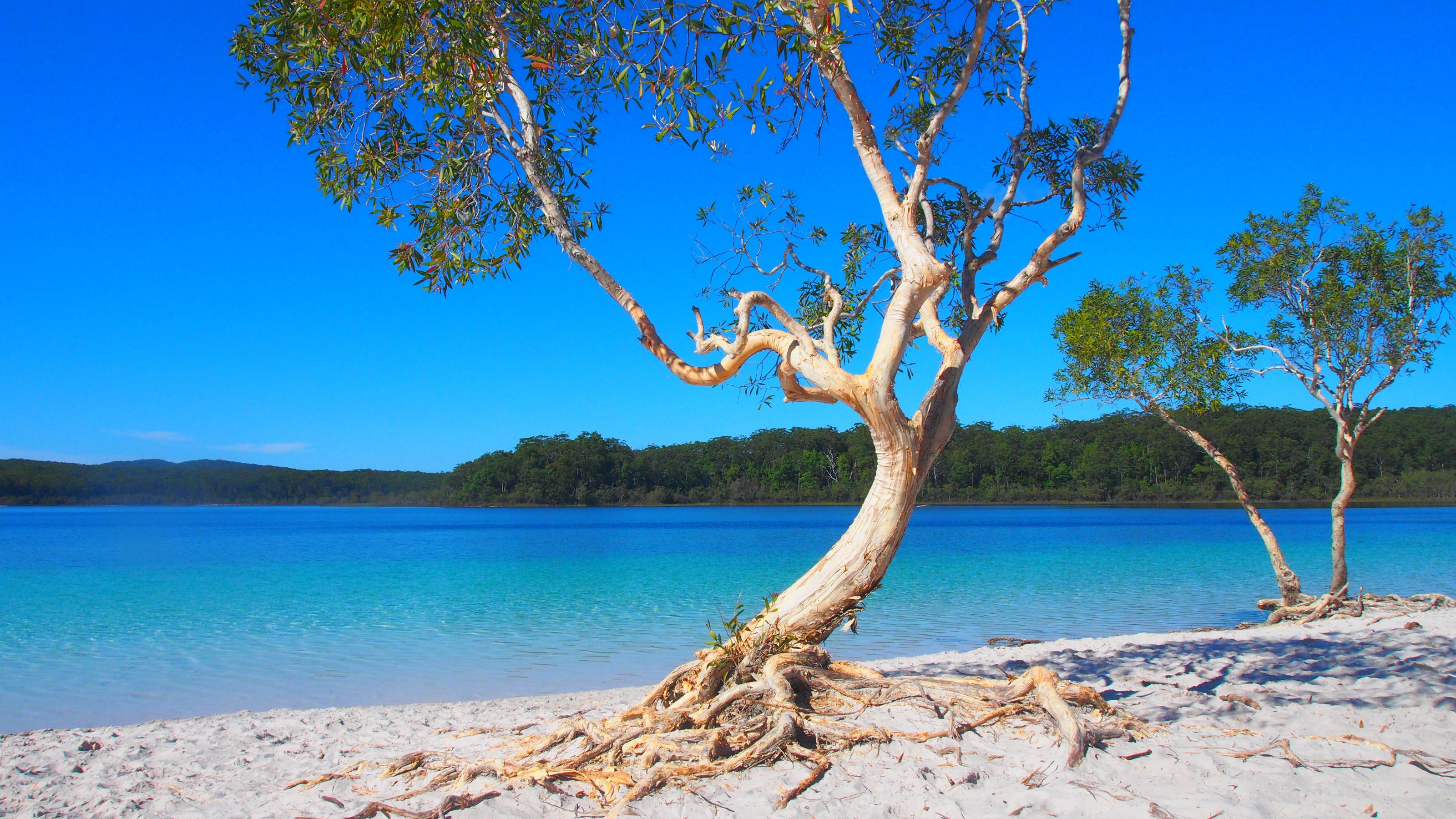View of the Fraser Island on the Sunshine Coast during the day