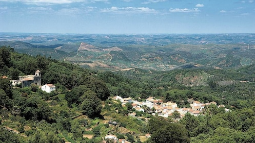 Silves and Monchique Mountain Half-Day Tour