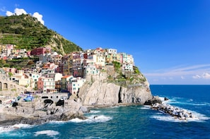Cinque Terre Private Tour from Livorno port