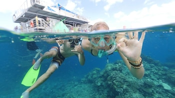 Marine World Cruise - Outer Great Barrier Reef Experience