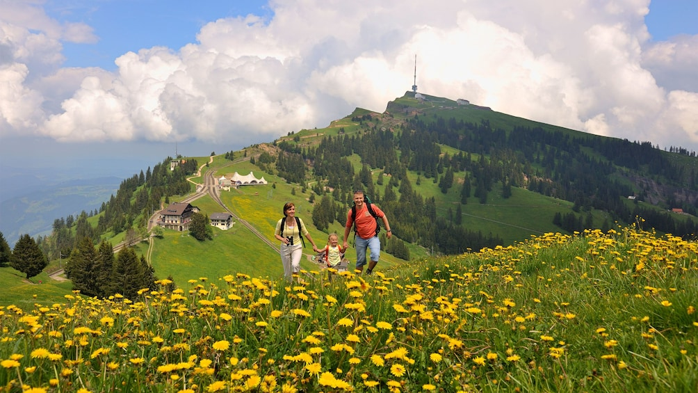 Family working through meadow in Switzerland