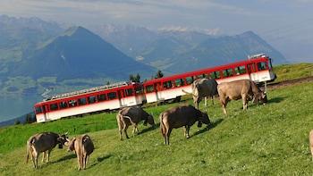 Mount Rigi & Lucerne Boat Cruise from Zurich