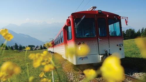 Mountain train in Switzerland