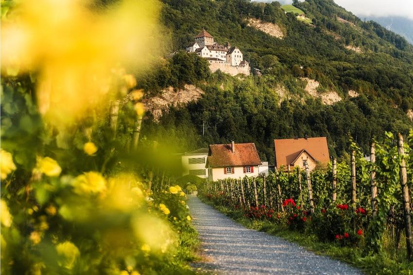 Show item 5 of 8. Heidi's World & Liechtenstein Day Trip