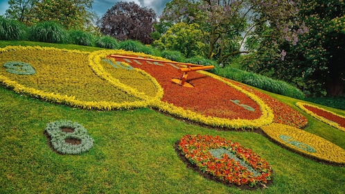 clock shaped garden in