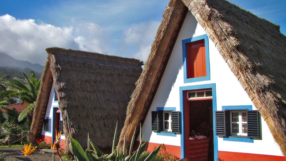 Colorful cottages in Santana