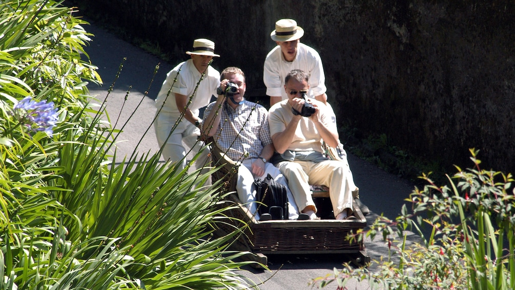 People taking photos in  Madeira