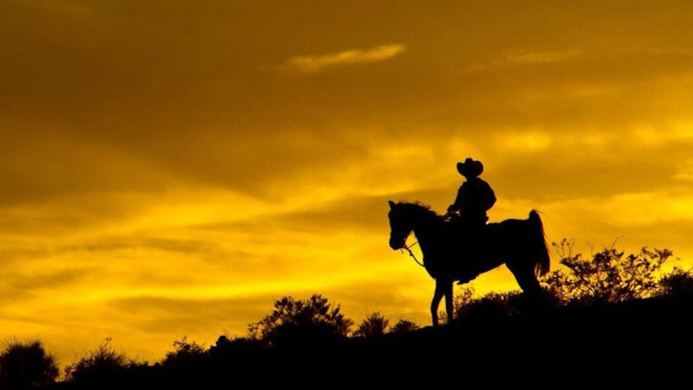Show item 5 of 5. Silhouette of a horseback rider in the Wild West in Las Vegas
