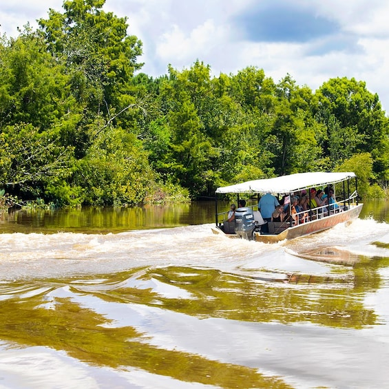 Show item 10 of 10. Cajun Bayou & Swamp Tour - New Orleans (With Transportation)