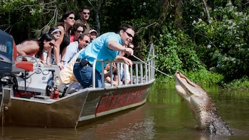 Cajun Bayou & Swamp Tour - New Orleans