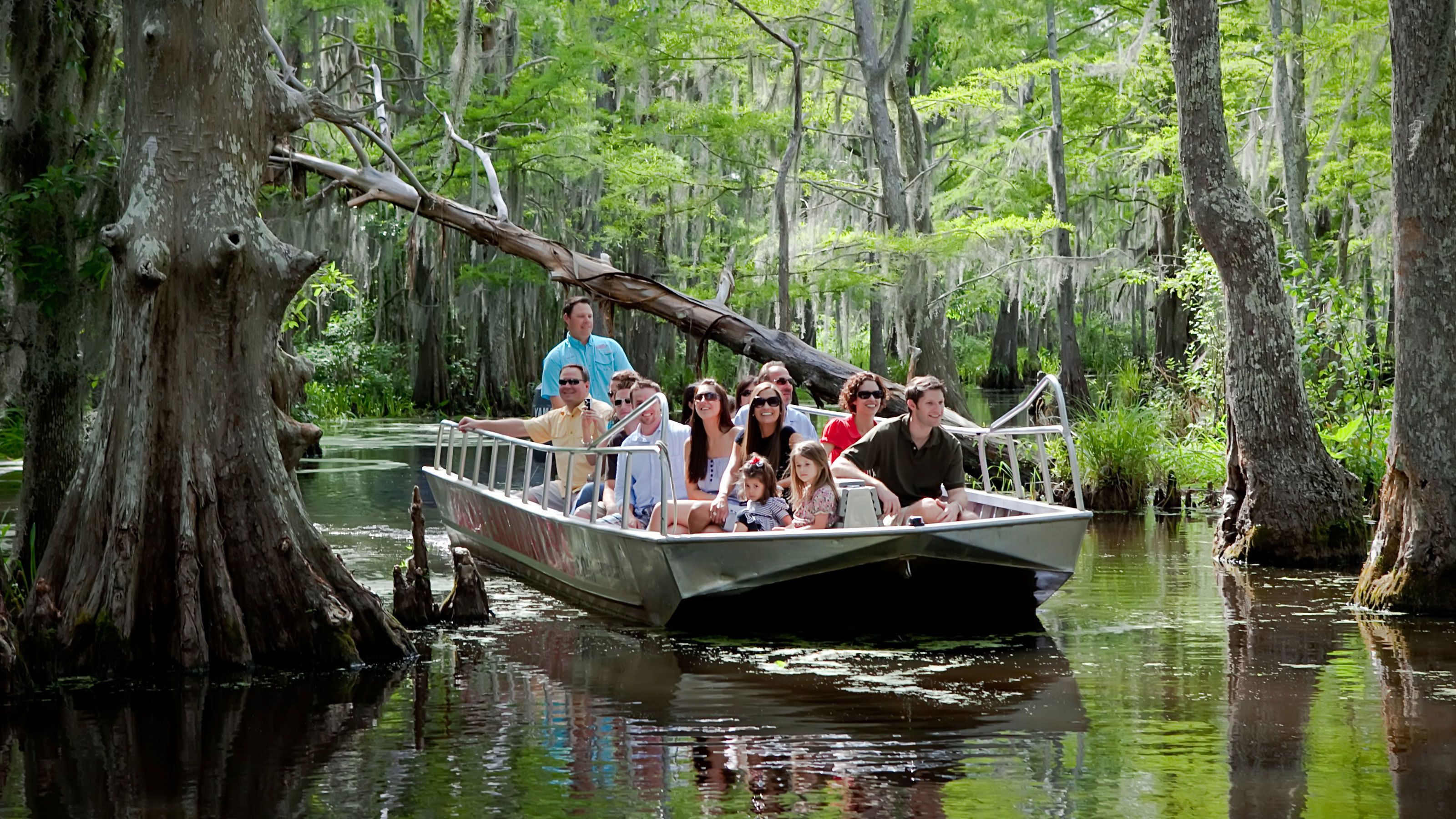 passengers on boat sailing through trees in swamp in New Orleans