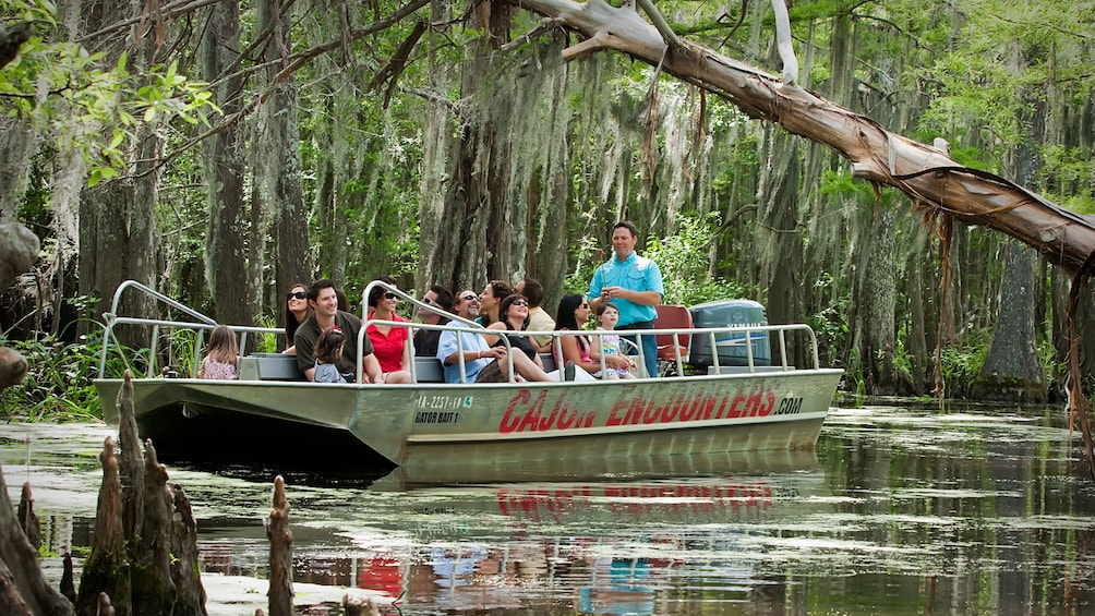 Show item 3 of 10. passengers on boat touring swamp lands in New Orleans