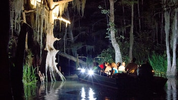 New Orleans Night Swamp Tour by Cajun Encounters